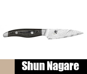 Shun Nagare
